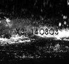 x3140803ftrimg